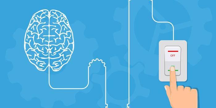 سیم کشی مجدد مغز برای موفقیت در کارآفرینی
