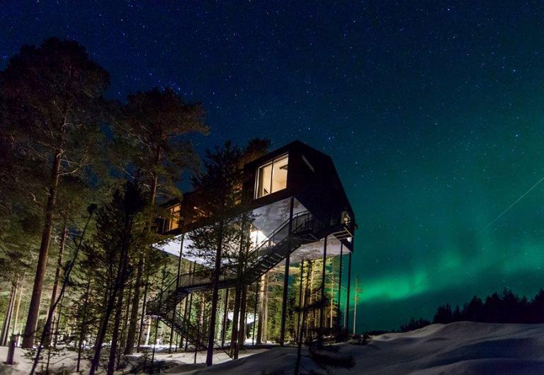 هتل درختی تری هَوس (Treehouse Treehotel)، سوئد