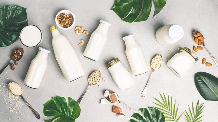 شیرهای گیاهی